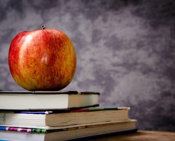 Návrat dětí do škol po přerušení výuky